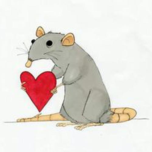 Rat de la Saint Valentin.  Source et auteur : inconnus.