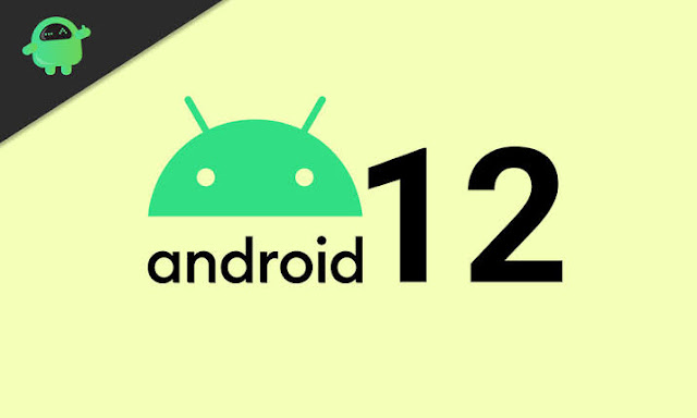 How To Set up And Install Android 12 Developer Beta