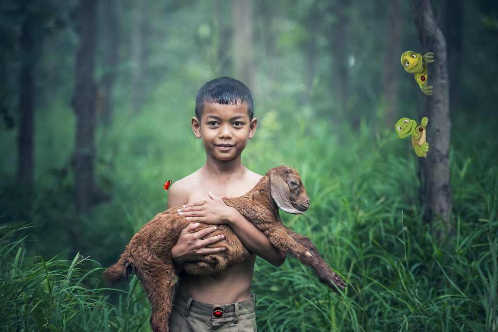"""Terra não pode continuar a ser o """"Inferno dos Animais"""""""