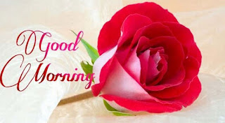Best Good Morning SMS in Hindi, Good Morning Hindi Message
