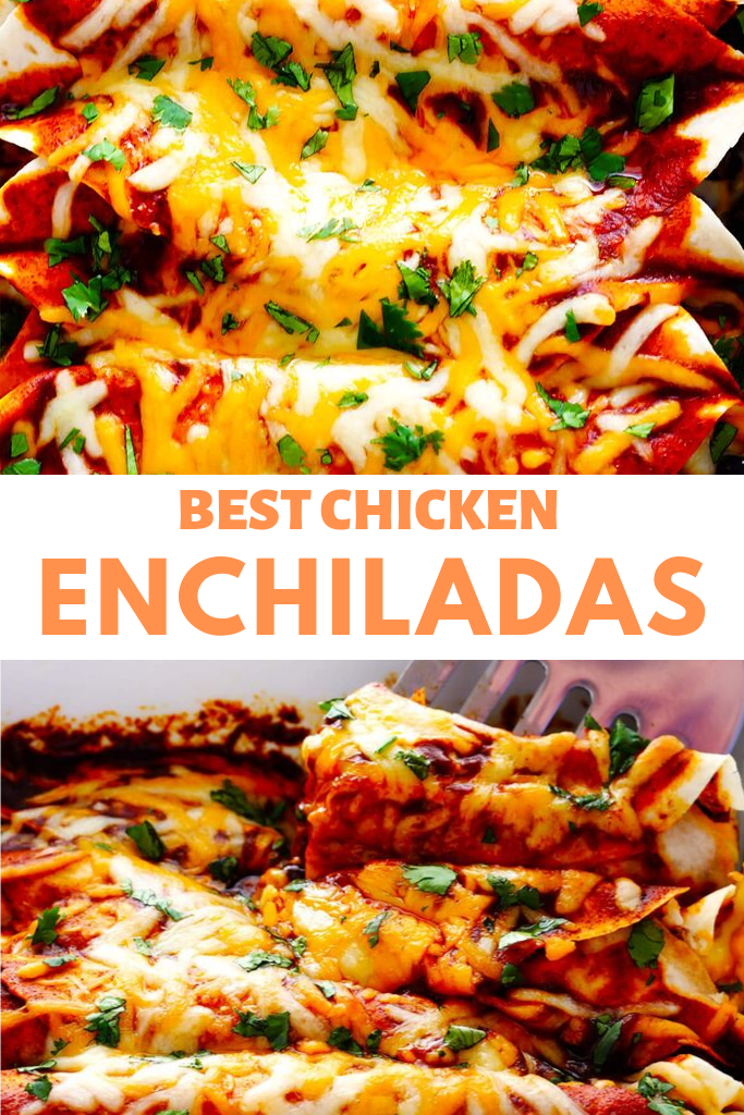 Chicken Enchiladas Recipes