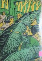 Memórias da Emília. Monteiro Lobato. Editora Brasiliense. Augustus (Augusto Mendes da Silva). Contracapa de Livro. Década de 1950. Década de 1960.
