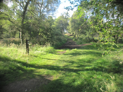 A junction in the walk around Loch Kinord