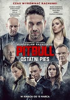 Pitbull Last Dog