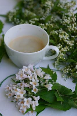 cafea, flori