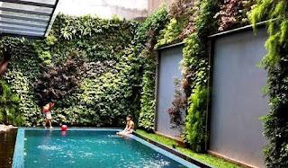 taman vertikal dengan di kolam renang