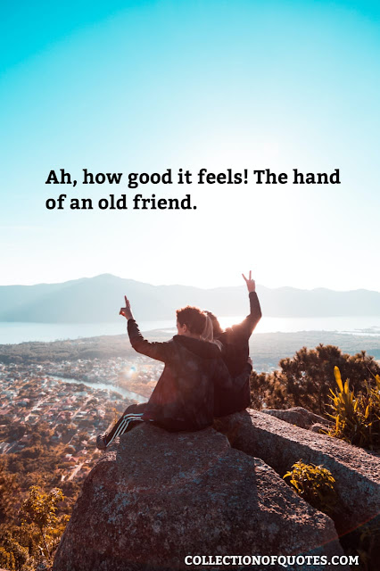 friendship quotes on old friends