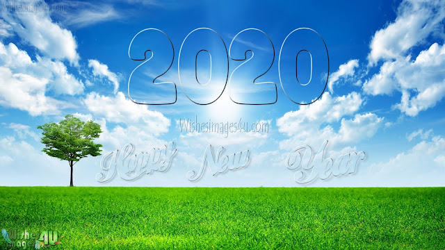 New Year 2020 HD Nature Background