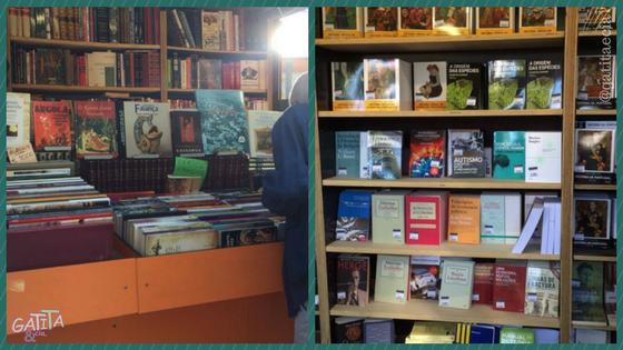 livros-Portugal-gatitaecia