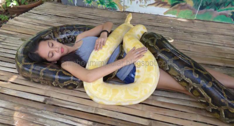 ♖ Terbaru Arti mimpi melihat ular yang sangat besar