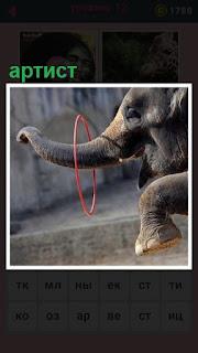 651 слов выступление слона на арене с кольцом 12 уровень
