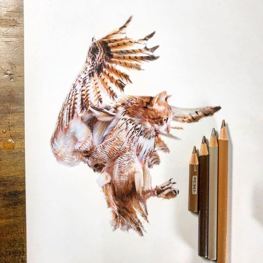 05-Cat-owl-hybrid-Guanyu-www-designstack-co
