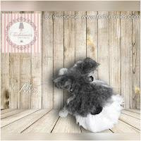 http://amigurumislandia.blogspot.com.ar/2018/10/amigurumi-perrito-peter-schnauzer-tarturumies.html