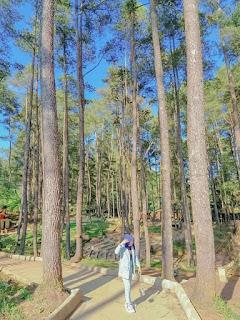 Agrowisata Pango-Pango, Tanah Toraja