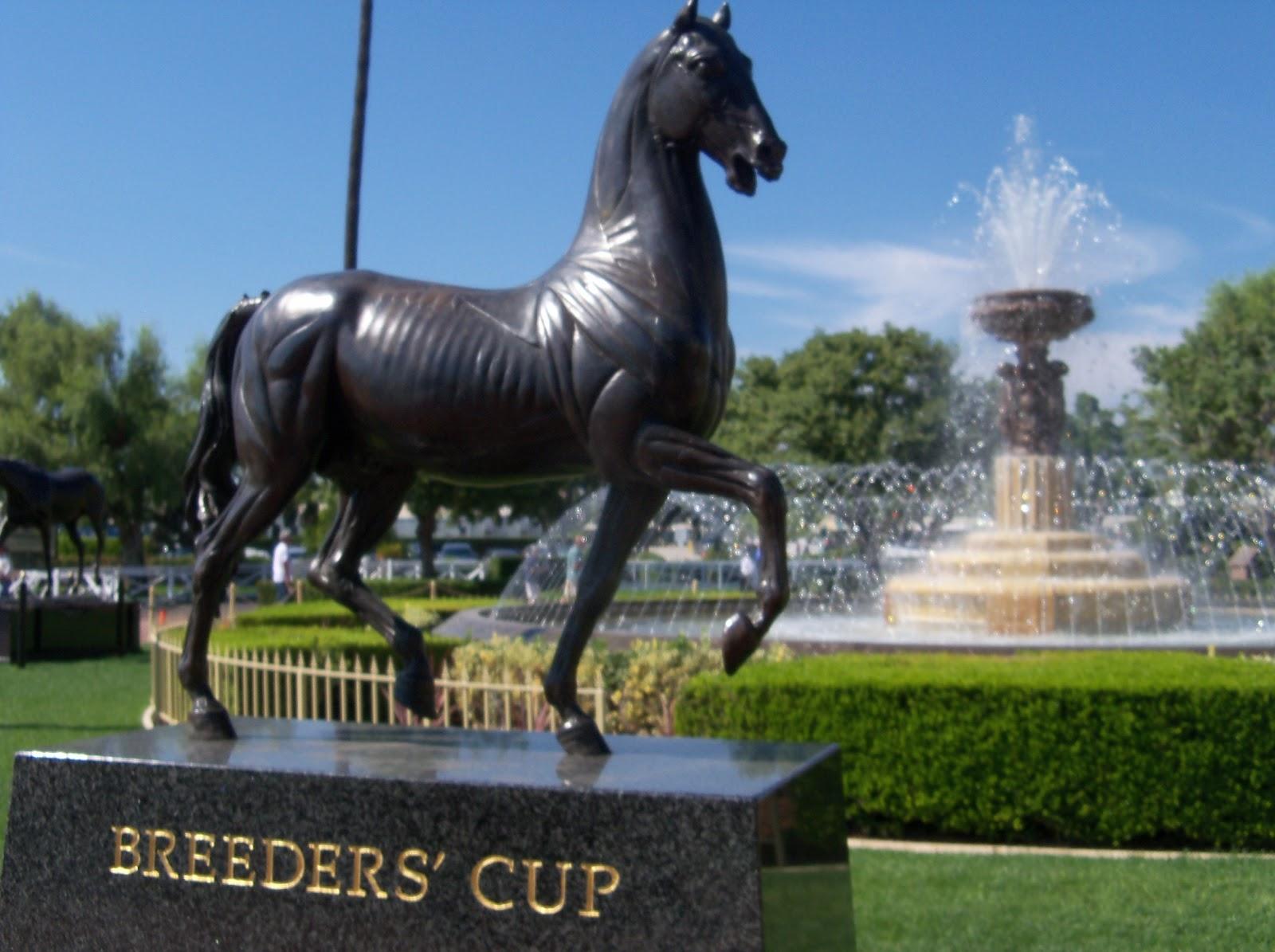 Paddock Girl S Horse Racing Picks