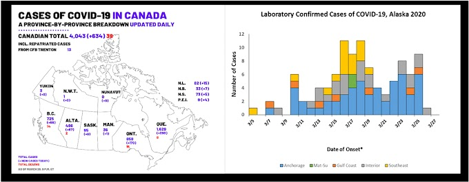 Canadá y Alaska derrumban teoría de que COVID - 19 se propaga en climas fríos con menos contagios y muertos que en áreas calientes y templadas