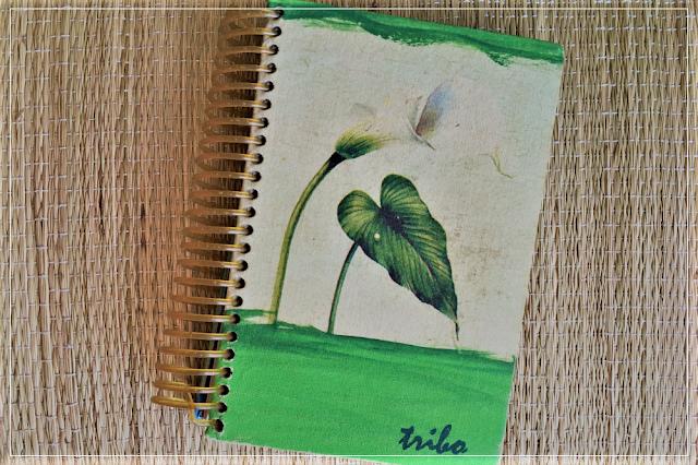 agenda-da-tribo-2007
