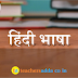 Hindi Questions For All Teacher Exam :14th January 2019