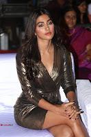 Pooja Hegde looks glamarous in deep neck sleevless short tight golden gown at Duvvada Jagannadham thank you meet function 062.JPG