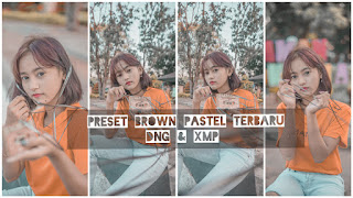 Preset Lightroom Brown Pastel Terbaru DNG & XMP