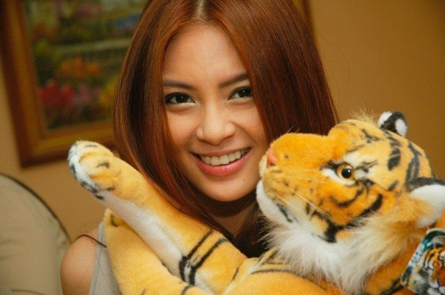hot sam pinto with tiger stuff toy 02