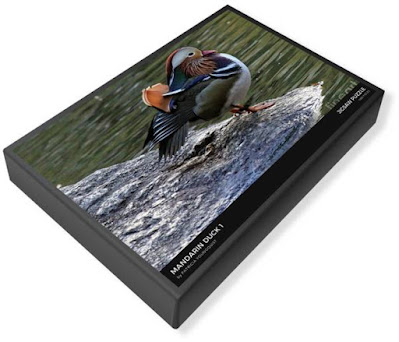 """This image of my puzzle's (""""Mandarin Duck #1"""") packaging is from Fine Art America @ https://fineartamerica.com/featured/mandarin-duck-1-patricia-youngquist.html?product=puzzle&puzzleType=puzzle-20-28"""