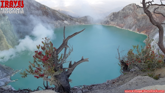 this phenomenon that only exists in Indonesia