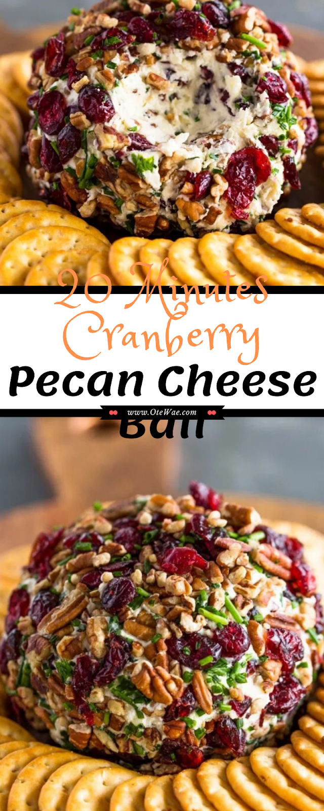 20 Minutes Cranberry Pecan Cheese Ball