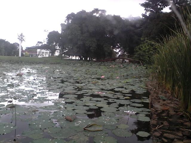 Foto Istana Bogor dari Tepi Danau Kebun Raya Bogor