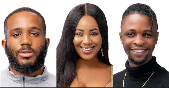 """#BBNaija:""""I'm Mentally Attracted To You And Physically Attracted To Kiddwaya' - Erica Tells Laycon (Video)"""