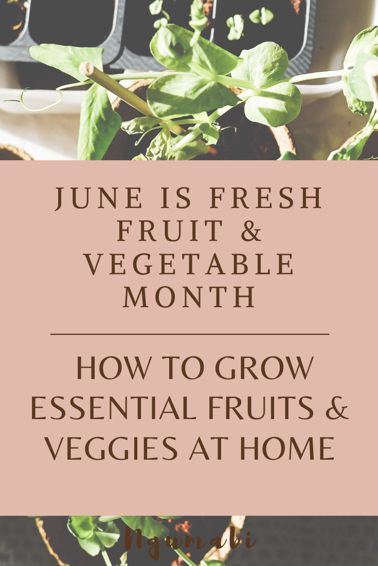 June is Fresh Fruit & Vegetable Month | How To Grow Essential Fruits & Veggies At Home