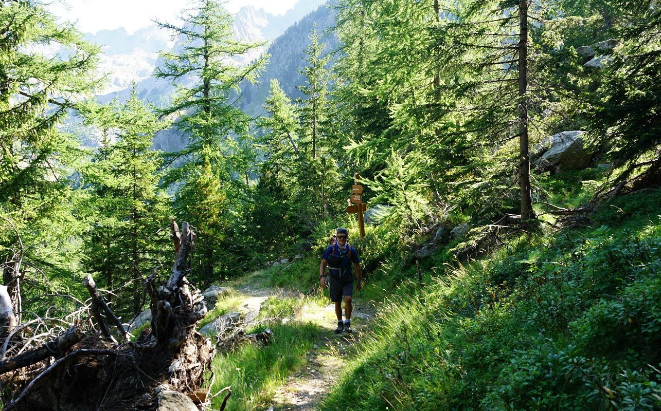 Passing signpost 354 on trail to Baisse de Férisson