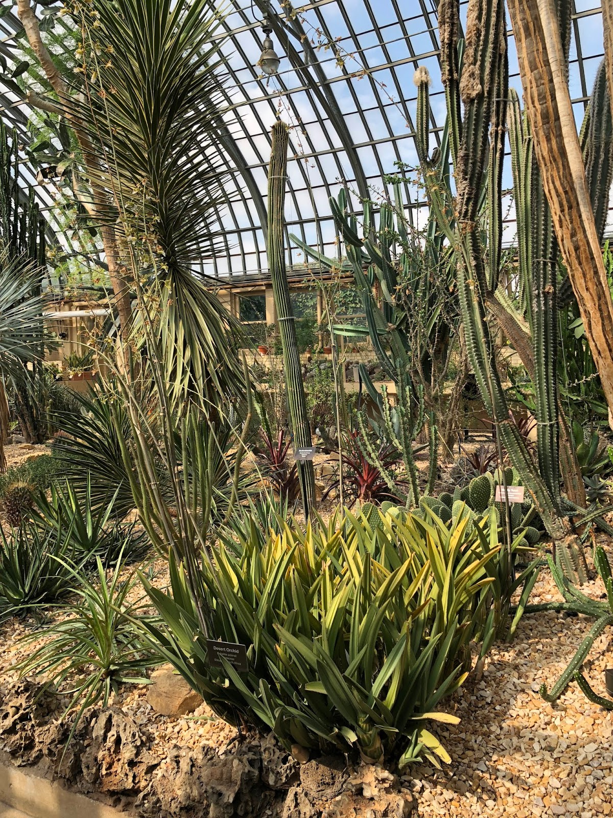 Vivero Growers Garden