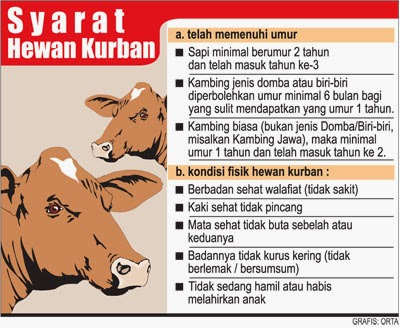 Qurban   Doa dan cara menyembelih hewan Qurban  c7f4dd5d1f