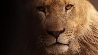 Kisah Hamzah Paman Nabi Muhammad si Singa Allah