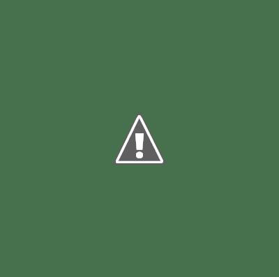 Notez que la catégorie principale de Target a été commutée en « magasin de jouets » pour aider à satisfaire l\'intention du chercheur, et les trois annonces montrent que Google a extrait des données du site Web de l\'entreprise pour déterminer la pertinence, ce qui rend inutile pour l\'entreprise d'explicitement diffuser via Google My Business la disponibilité de produits individuels