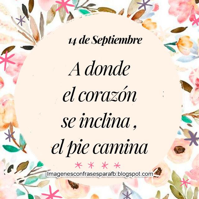 Frase para el Día 14 de Septiembre