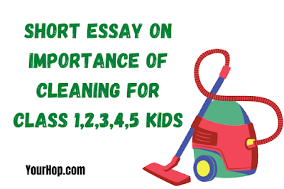 Essay on Importance of Cleaning