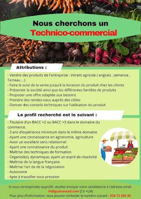 Technico-commercial