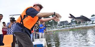 Walikota Jambi Bersama PUBJ Melepas-Liarkan Bibit Ikan di Danau Sipin Jambi