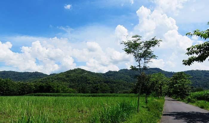 Dinding Hijau Bukit Sriten di Depan