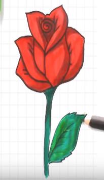 جيد الملقحات علانية رسم وردة جميلة وسهلة Dsvdedommel Com