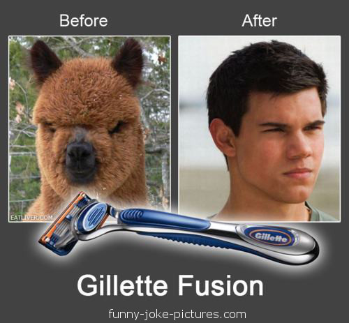 Funny Twilight Taylor Lautner Before After