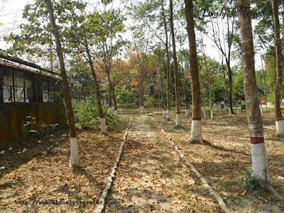 Botanical garden mymensingh