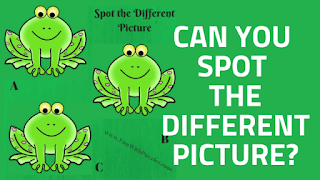 In these Brain-teasing Pictures Puzzles, your challenge is to find the odd man out
