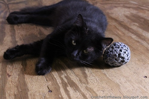 ball, cats, crochet, plarn, plastic yarn, recycle