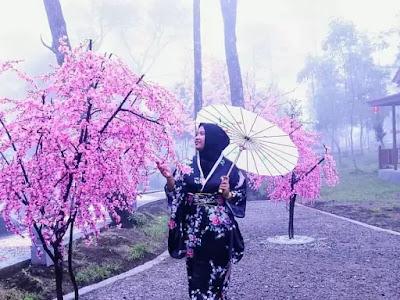 sakura hills tawangmangu