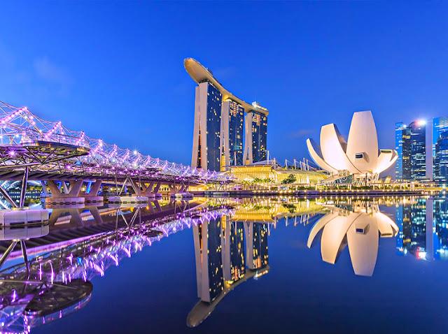 Lumina Rainforest khu rừng đa phương tiện đầu tiên ở Singapore