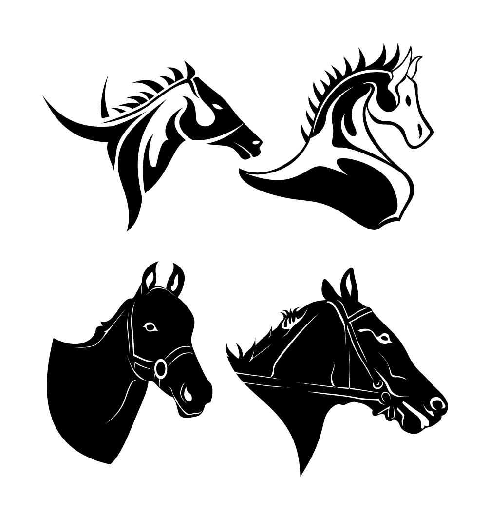 Horse Head Vector ~ vandenuj