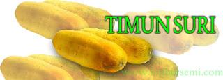 timun-suri,www.healthnote25.com